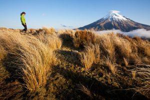 new-zealand-trekking