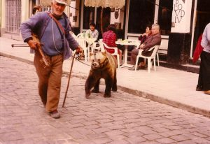 bear-balkans