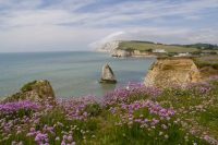 Why Isle of Wight Should Be Top of Your List