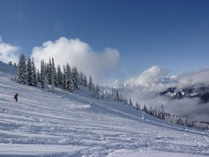 Carving-whistler