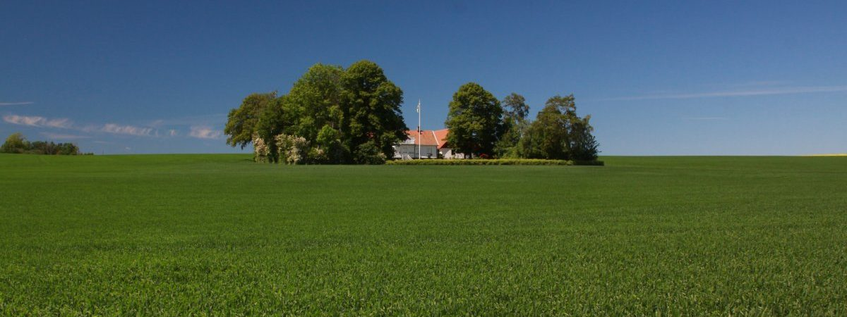 Exploring Local Agritourism in Southern Sweden