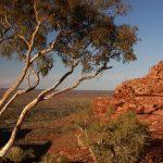 australian-outback (5)