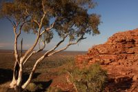 Notes from the Great Australian Outback, Northern Territory