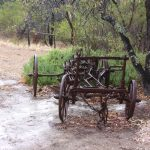 Old wagon near the Barossa Goldfields