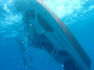 great-barrier-reef-capsizing (3)