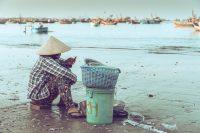 Feast: Vietnam Vittles