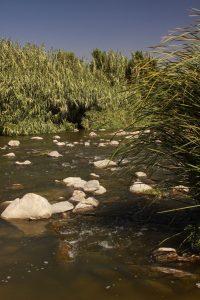 la-river (1)
