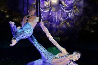 Cirque du Soleil's Zarkana—Wild, Wondrous and Body-Boggling
