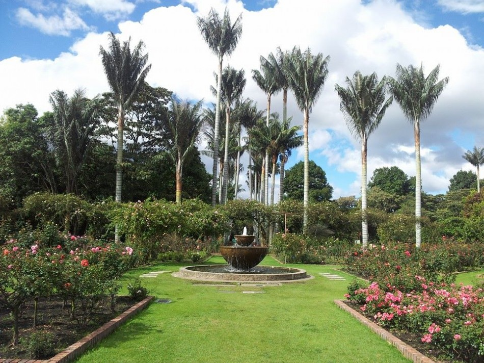 The Botanical Gardens of Bogota