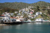 Catalina Express continues Free RIDE on Your Birthday