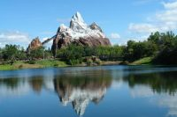 The Allure of Disney World in Orlando