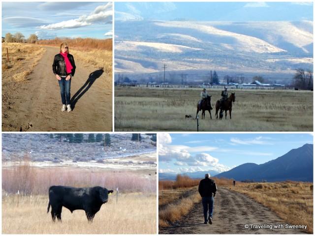 River Fork Ranch Trail, Carson Valley, Nevada