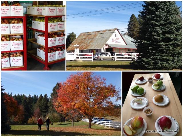 Larsen Apple Barn and Larsen Famiiy Park, El Dorado County