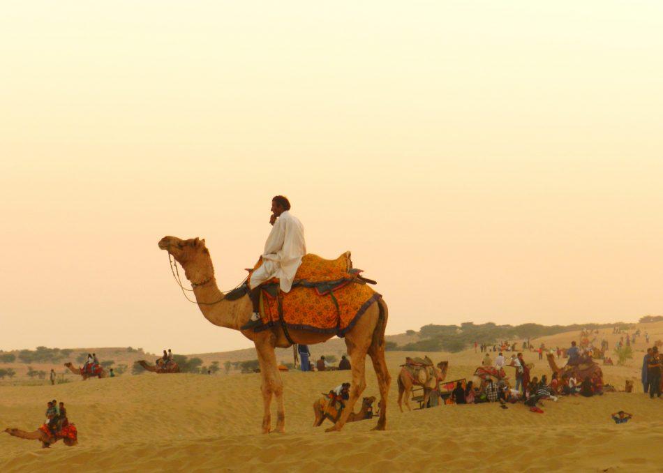 camel ride, desert safari, jaisalmer, thar desert rajasthan