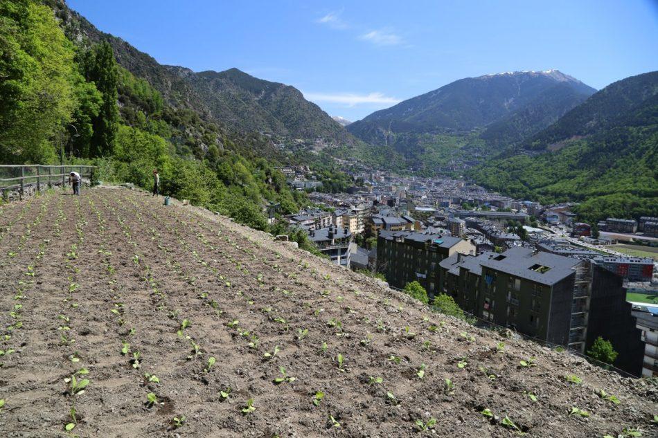 Cami-de-la-Curruba-Andorra (6)