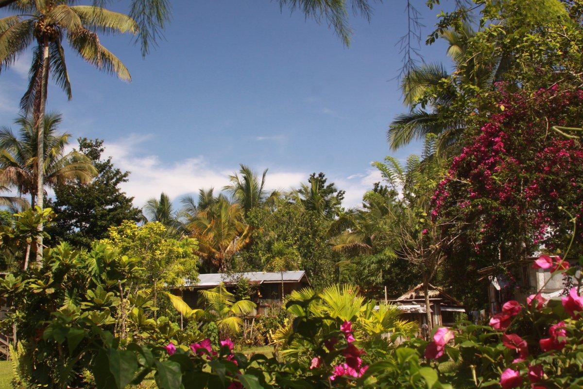 papua-new-guinea-homestay