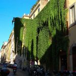 Getting the Full Monti: a Guide to Rome's Hippest Neighbourhood