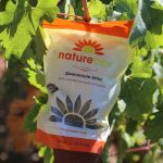 Wine Tasting with NatureBox in the Napa Valley