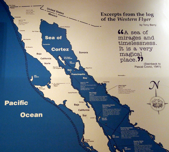 Interpretive panel at the Steinbeck Center display on _Log to the Sea of Cortez_ in Salinas