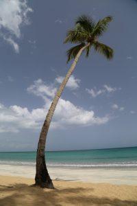 las-terrenas-dominican-republic (3)