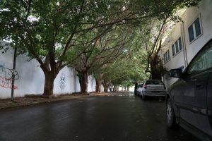 tunisia-carthage-la-marsa-sadi-bou-said (1)