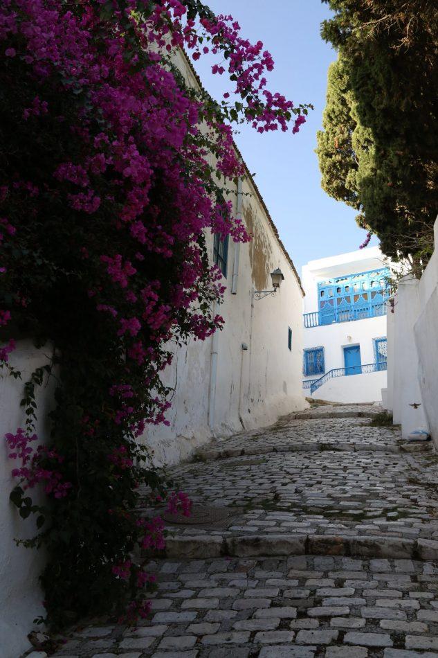 tunisia-carthage-la-marsa-sadi-bou-said (9)