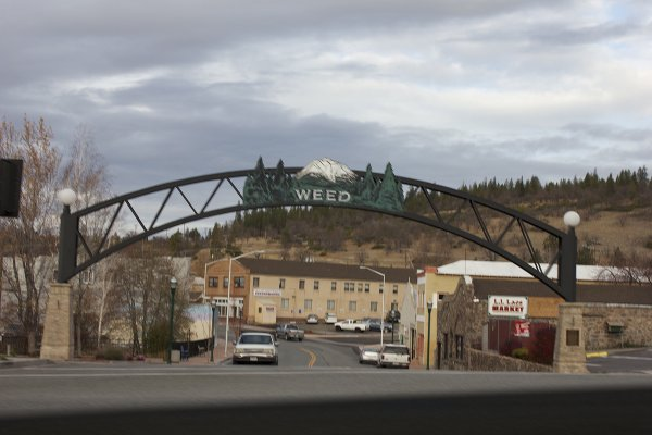 Weed, CA: Sasquatch's back yard