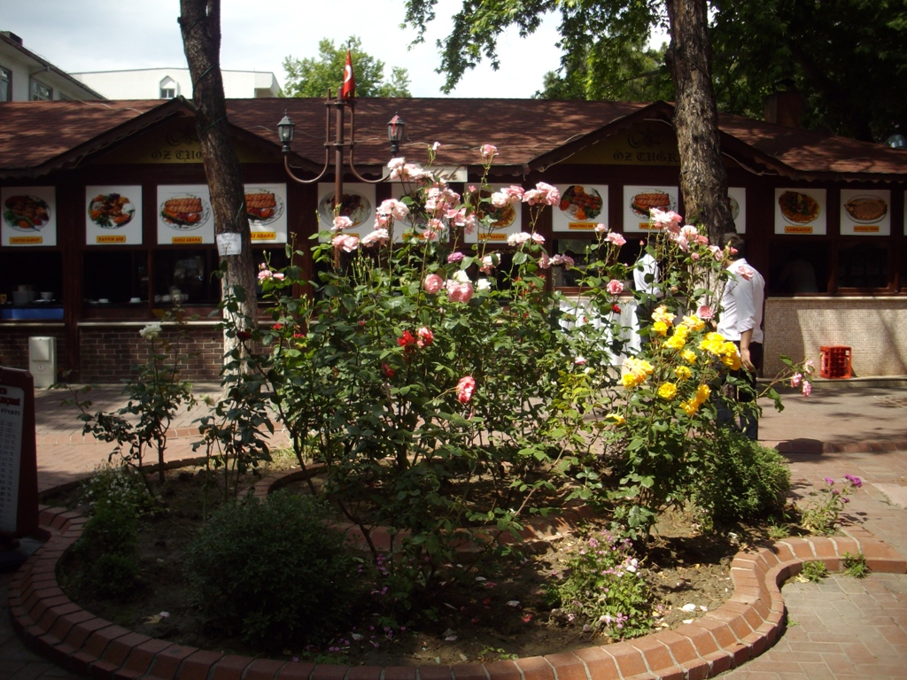 Amasya's Tea Garden