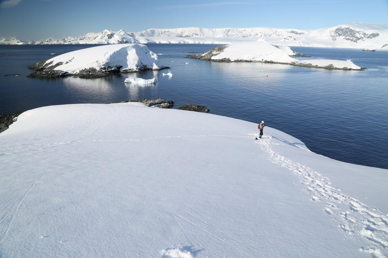 antarctica-oceanwide (1)