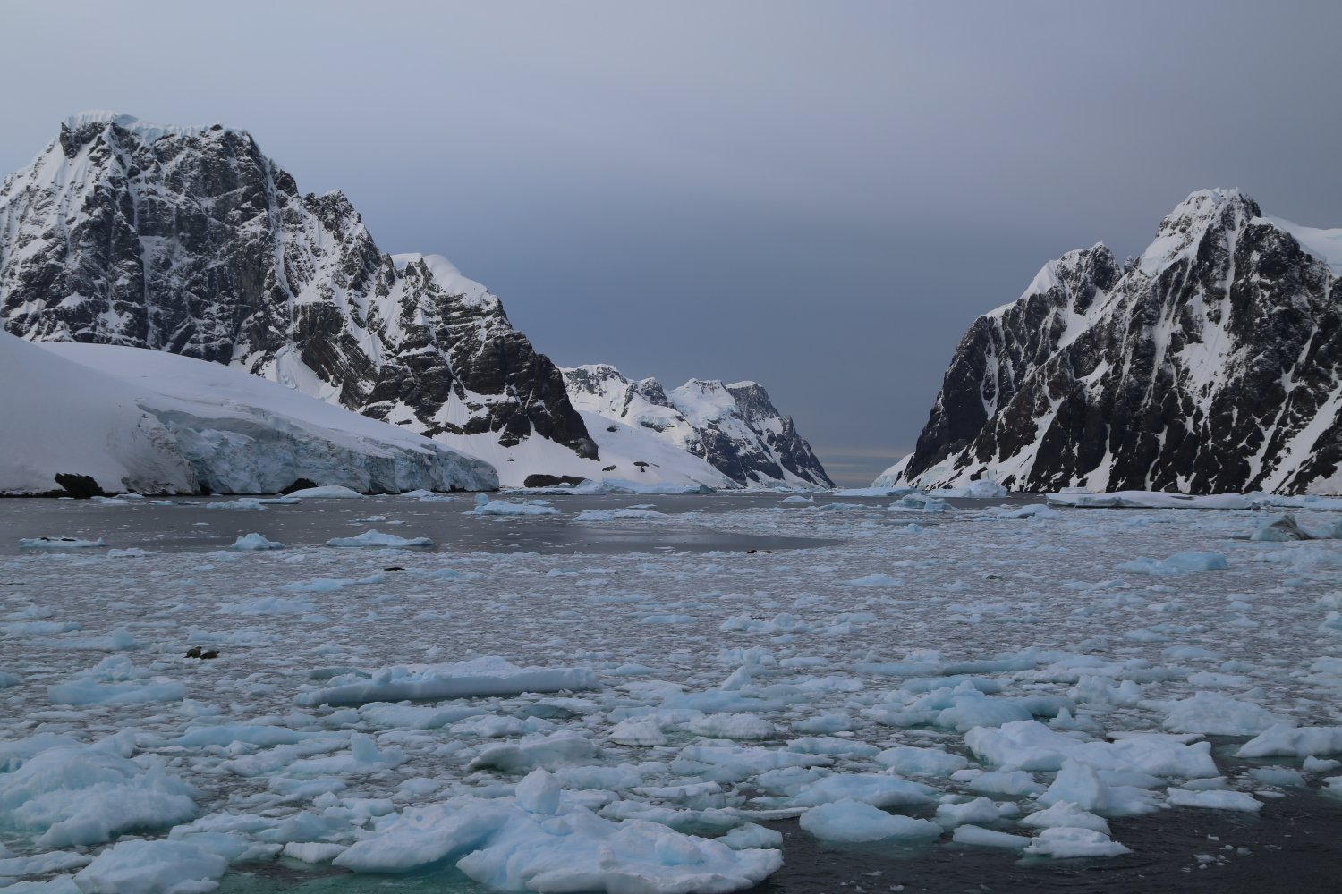 Basecamp Ortelius Ushuaia To Antarctica Cruise With Oceanwide Expeditions Dave S Travel Corner