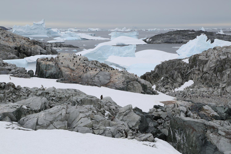 basecamp-ortelius-antarctica (13)