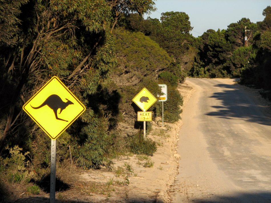 Australian Wildlife Road Signs