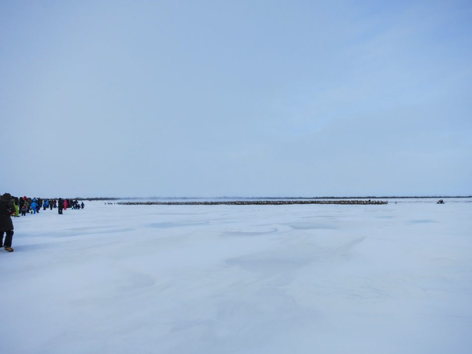 Ice Road Mackenzie River closed for the reindeer crossing