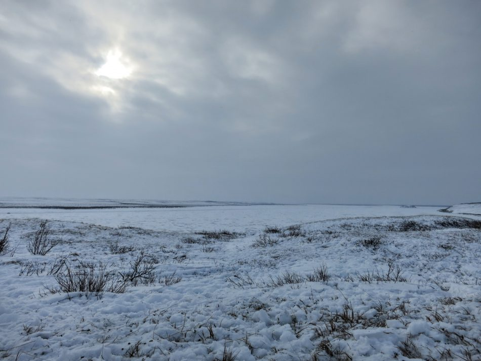 View of the frozen Mackenzie River from Richard Island