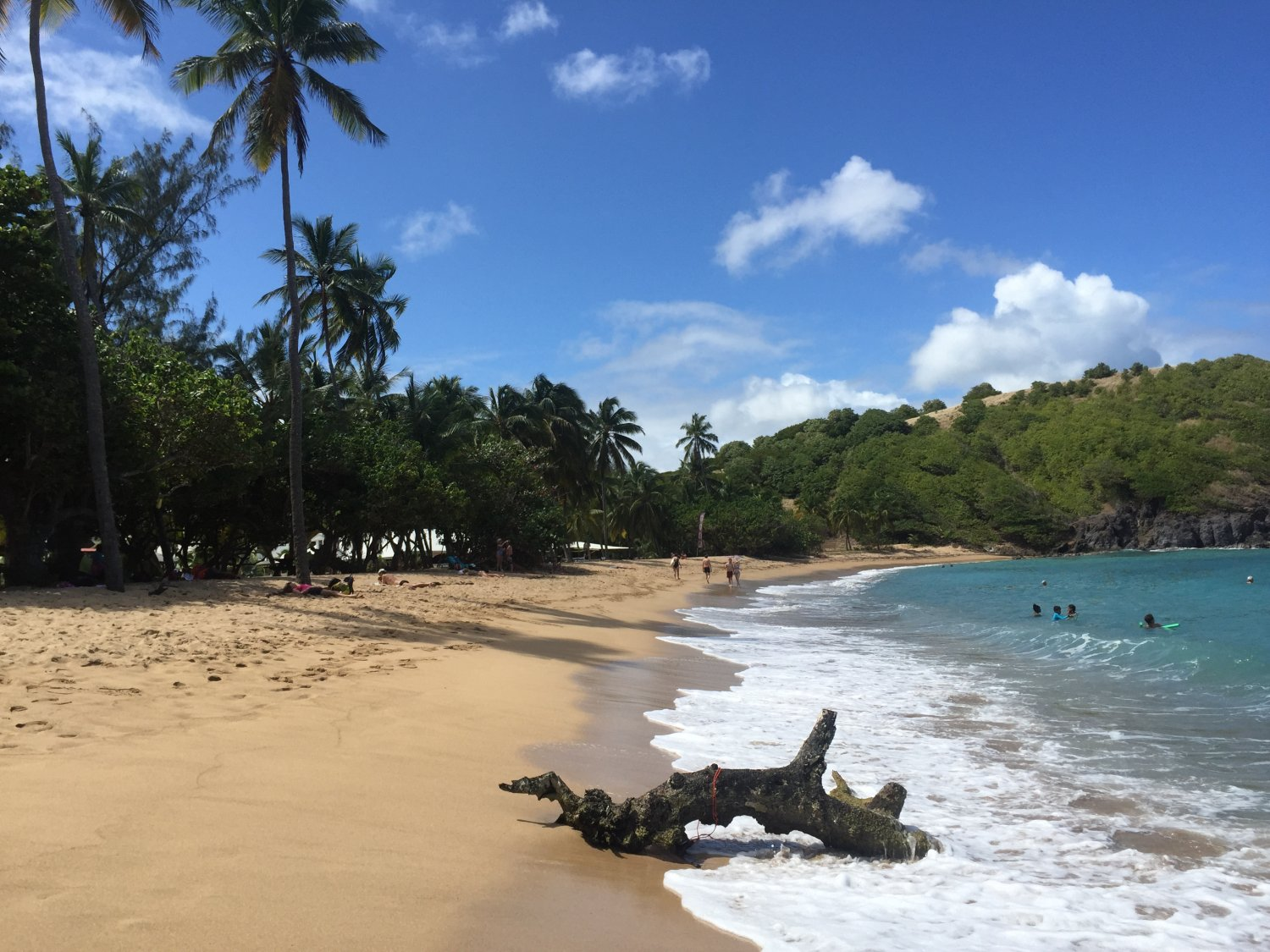 martinique (1)