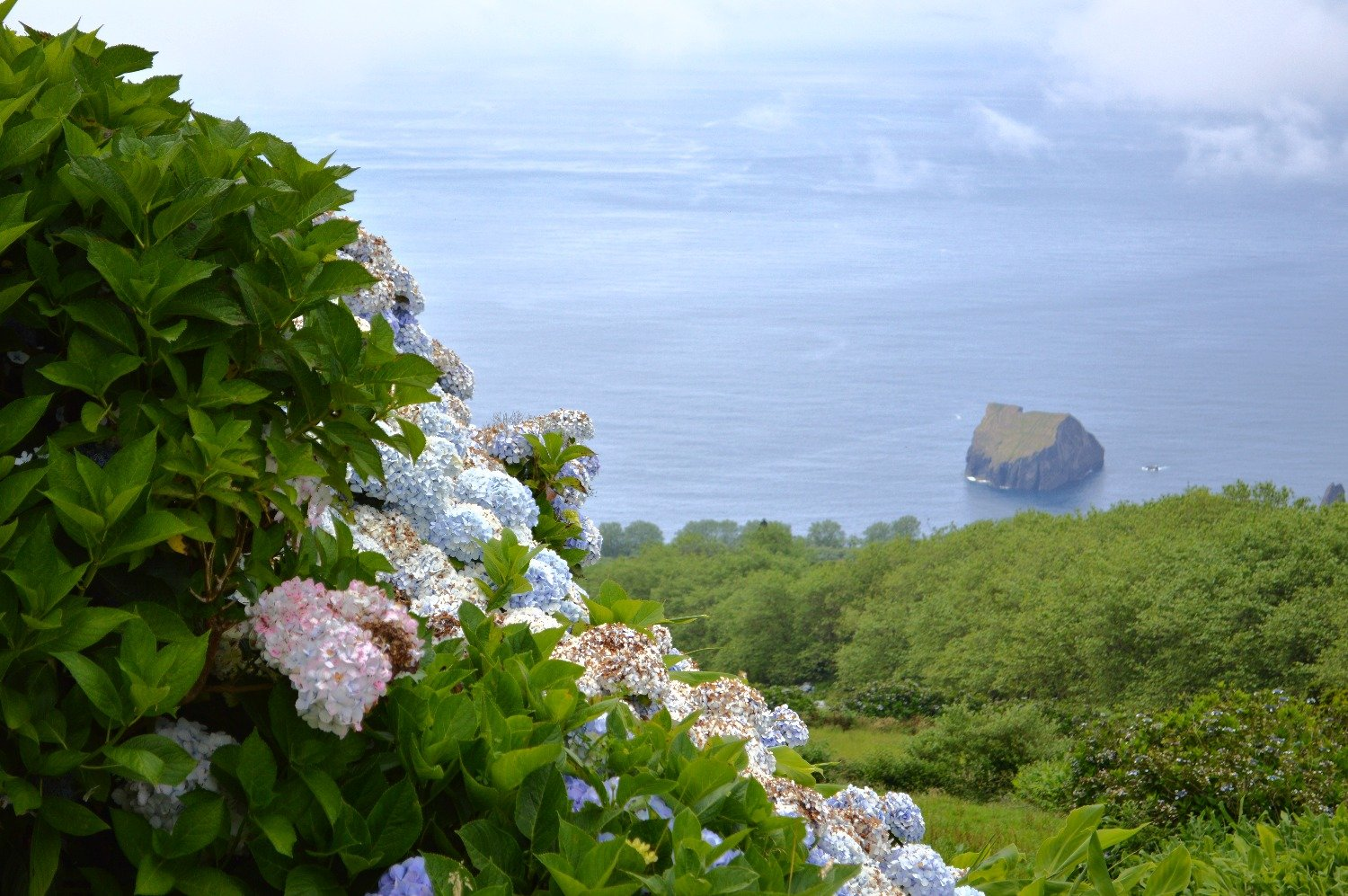 Azores - a corner of eternal sun and bright greenery in the Atlantic 46
