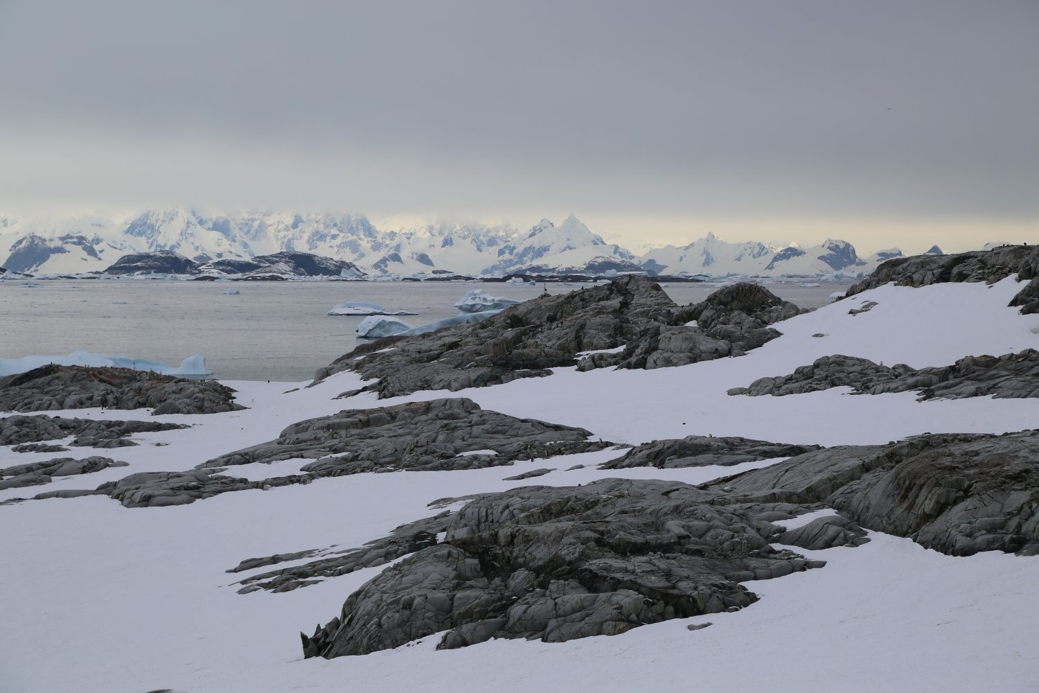 antarctica-views (2)