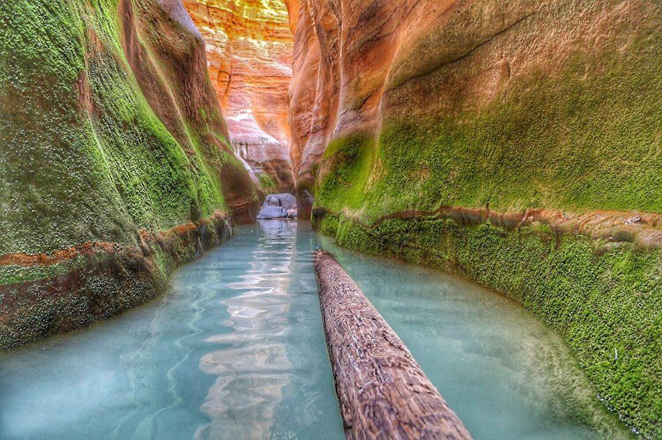 wadi-pool