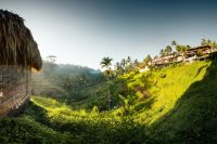 Welcome to Bali– Tropical Paradise or Living Hell?