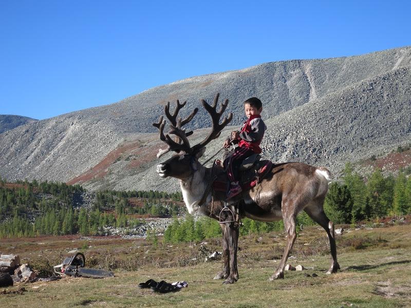 tsaatan-nomads-mongolia-13