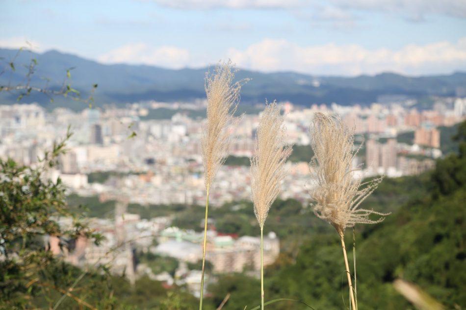 taipei-taiwan-2