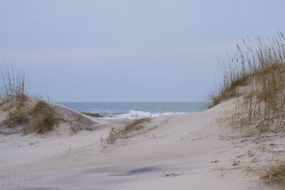 Pea Island National Wildlife Refuge-Natures Sandcastle