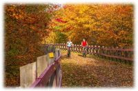 Atlantic Canada Delivers Foliage, Flavor and Festivals Aplenty this Fall