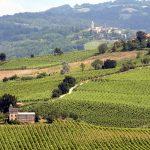 oltrepo pavese wine region