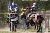 An Exciting Trip to a Renaissance Festival