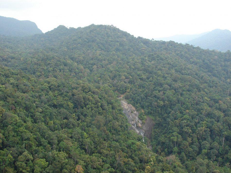 Mountain Climbing At Langkawi