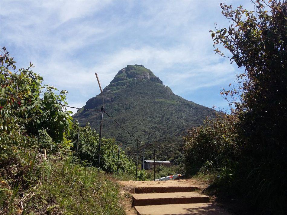 sri pada peak