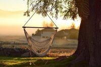 Carson Valley, Nevada – An End Of Summer Destination That's Easy to Find But Hard to Forget