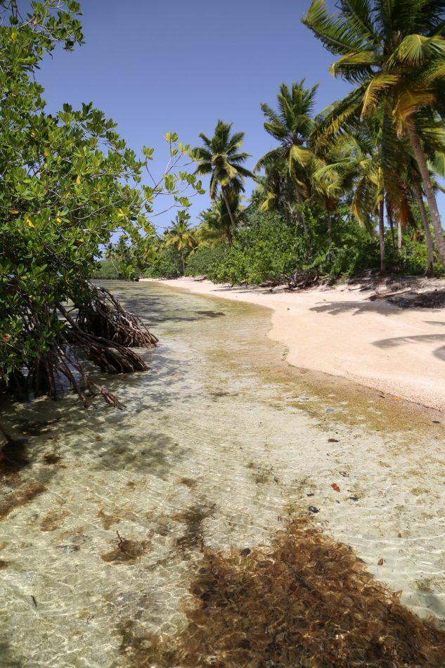 las-terrenas (2)