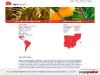 Lingua Learn Spanish Abroad
